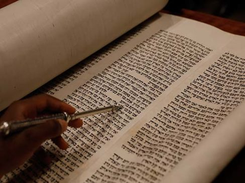 Torah Commentary