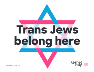 "Image shows a star of David made of interlocking Pink and blue triangles. Over the text is the phrase ""Trans Jews belong here"" in black writing."